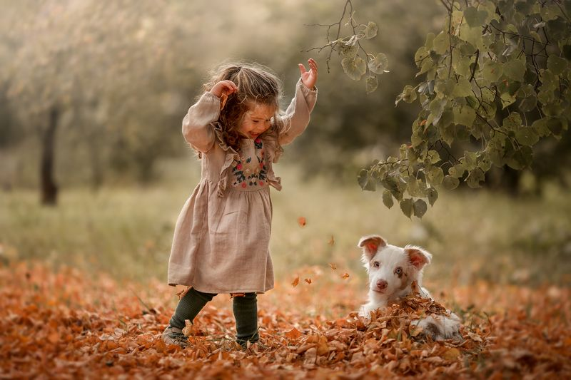 Девочка, улыбка, веселье, прогулка, собака, осень, листва Веселая прогулкаphoto preview