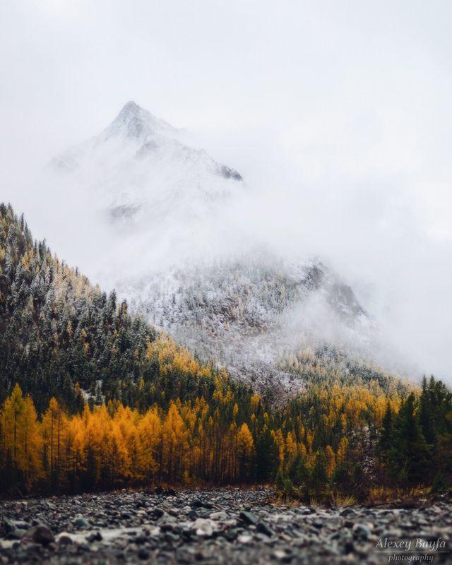 горы, пейзаж, природа, осень, лес, снег, облака, туман, утро Дыхание осениphoto preview
