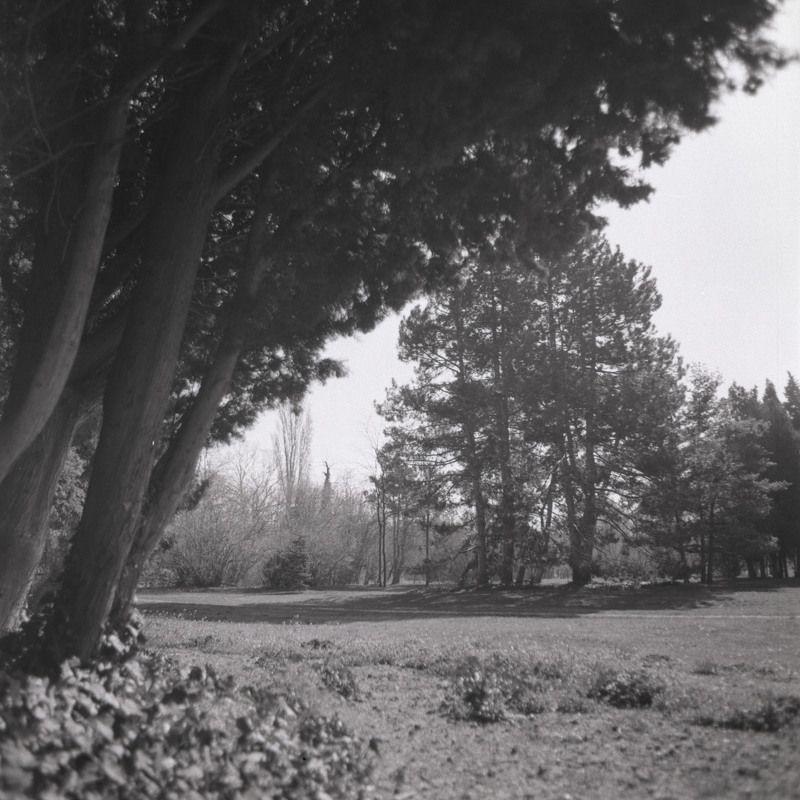 film, пленка, средний, формат, middle, format Parkphoto preview