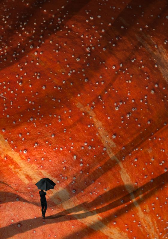 Космический дождьphoto preview