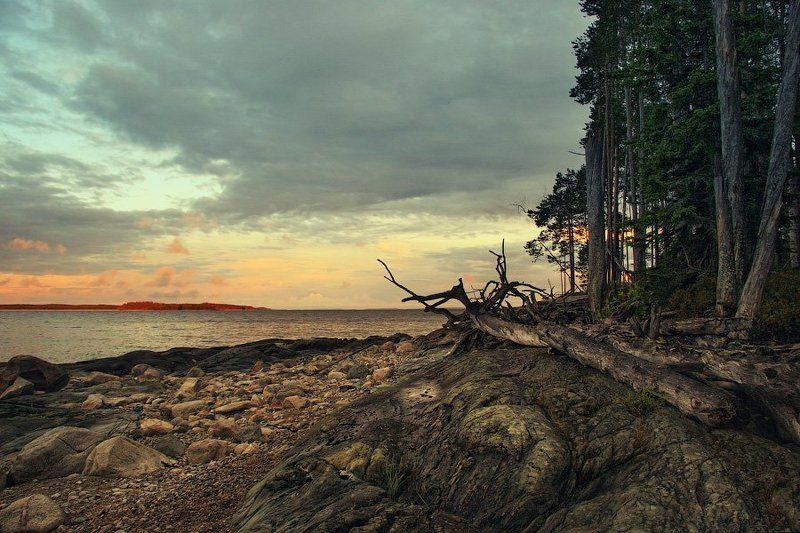пейзаж, вода, река, карелия, лес, остров, камень, закат, небо, отдых, dyadyavasya photo preview