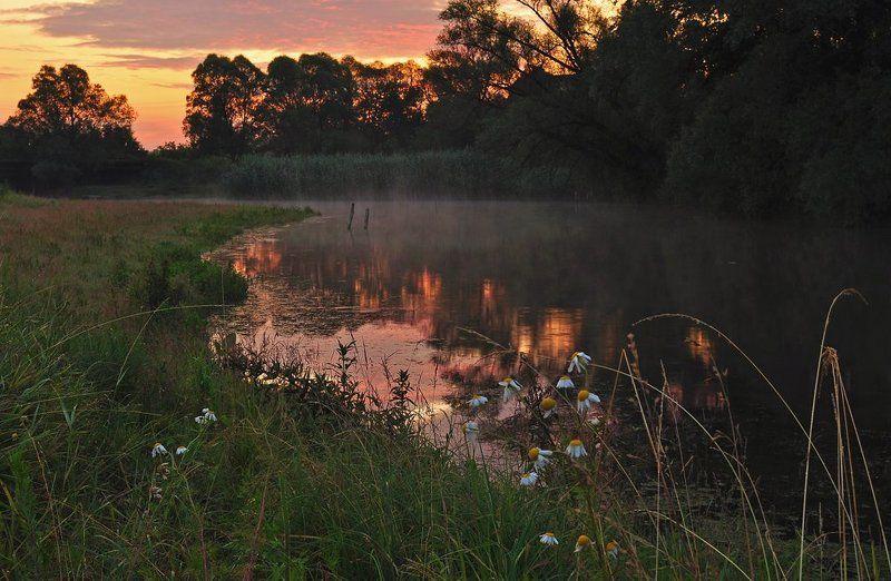 тишина, река, рассвет photo preview