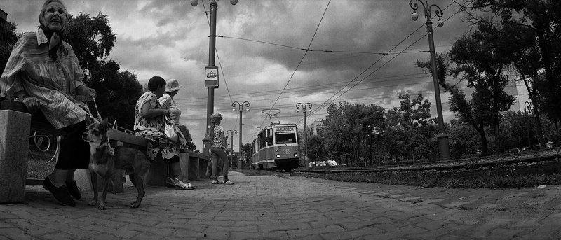 Прибытие трамвая на остановку Дикопольцева - 2011г.photo preview