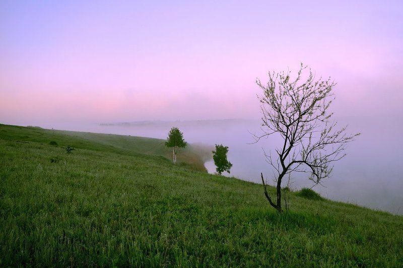 утро, туман, тишина туманphoto preview