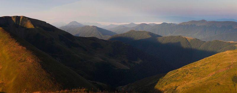 до, небес. Синий лес.photo preview