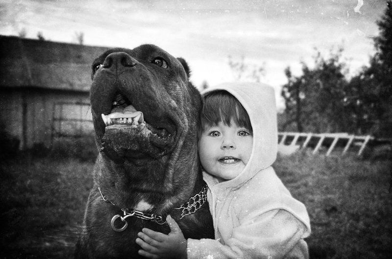 портрет, ребенок, собака, фотография, чб, annaprimki.ru **photo preview