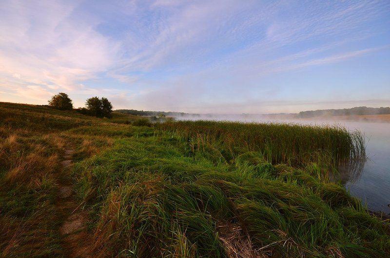 утро, тишина, туман, тропа рыбацкая тропаphoto preview