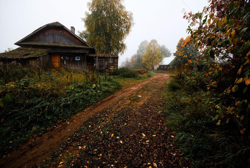 осень,природа,вятка Осеннее утро. photo preview