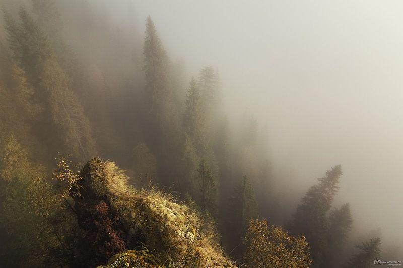 усьвенские столбы, усьва, рассвет, туман,скала, тропа, пермский край, свет, Туманное утро на Усьвенских столбахphoto preview
