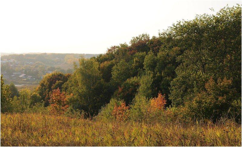 Осень,цвет,деревья Осени началоphoto preview