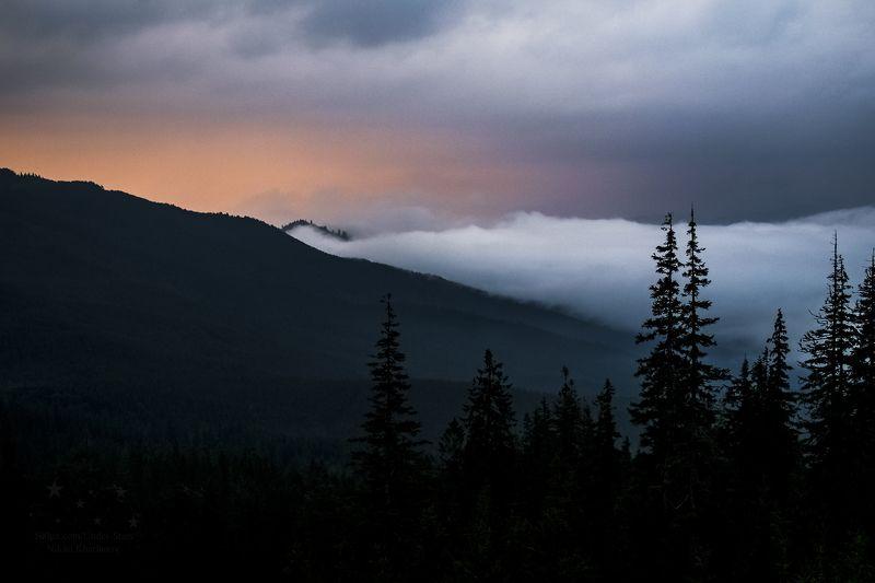 Драгобрат, Карпаты, горы, туман, облака, Украина, Закарпатье  Туманное утроphoto preview