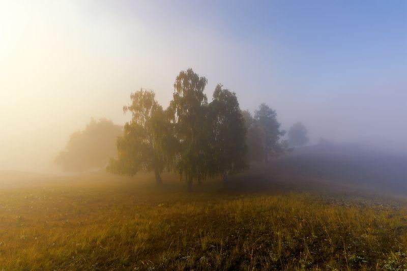 утро, рассвет, восход, туман, лучи Осенний сонphoto preview