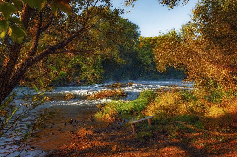 утро, рассвет, туман, природа, лес Первое осеннее утроphoto preview