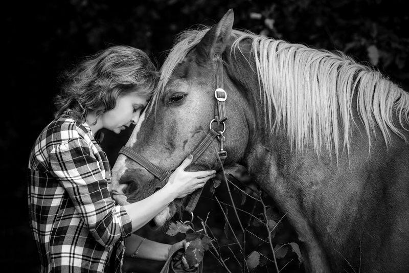 девушка лошадь лес грусть природа кони рубаха клетка расставание Дружище мой Фоксphoto preview