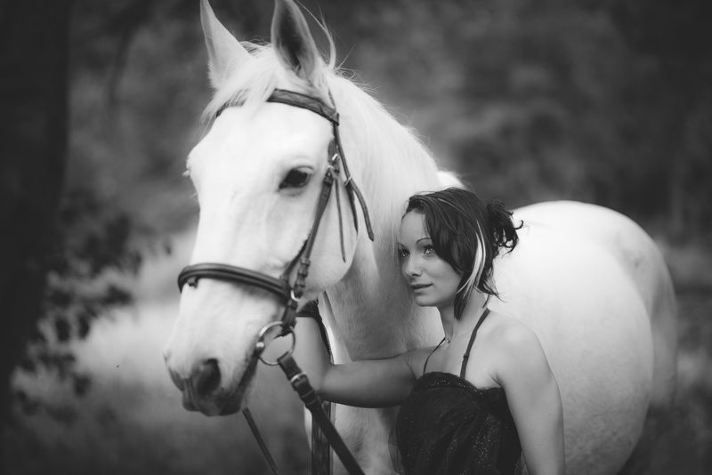 horse, portrait, white, girl Deena and White Horsephoto preview