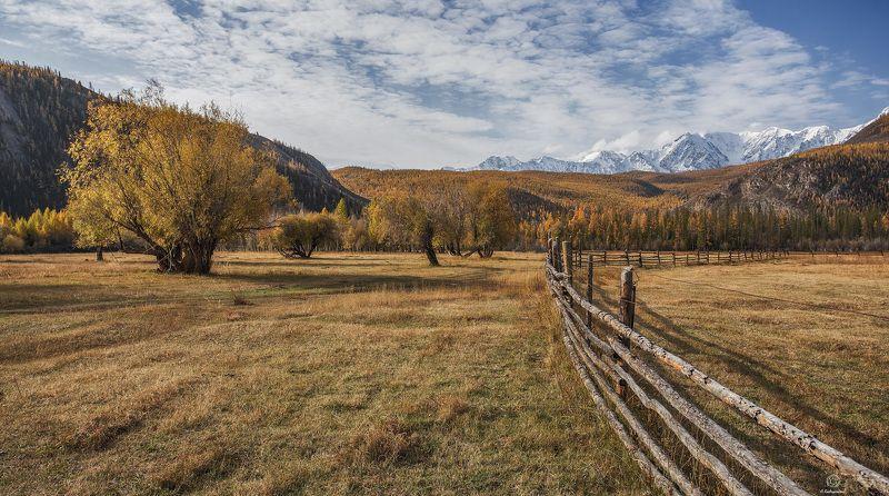 осень, небо, горы Осенняя поэзия / Altaiphoto preview