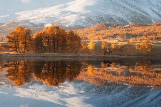 Две осени Монголии