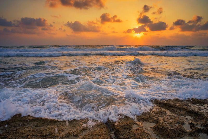 море, пена, закат , солнце. Пенная медуза заката..photo preview