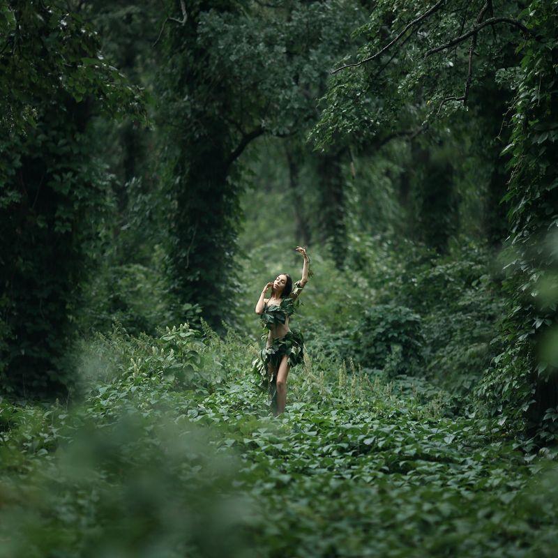 лес, заросли, нимфа, лесная нимфа, джунгли Лесная нимфаphoto preview