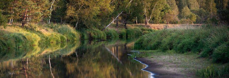 река, лес, лесная река, вечер, вечерняя река, мещёра, рязанская область У вечерней рекиphoto preview