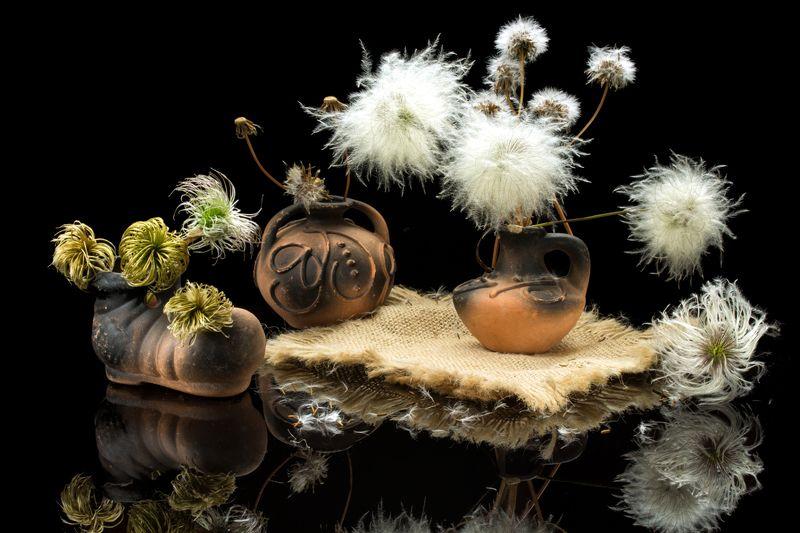 натюрморт, ваза, башмачок, цветы, пушистики Пушистикиphoto preview