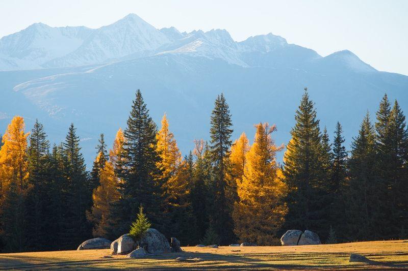 Алтай, горы, россия Неизведанный Алтай. Долина Аргутаphoto preview