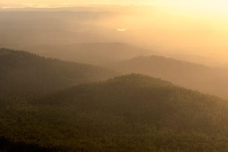 природа, лес, гора, дерево, пейзаж, туман, пейзажи, на открытом воздухе, холм, закат солнца, осень, утро, туман, рассвет, красота в природе, восход-рассвет, сельская сцена, солнечный свет, сезон, небо Утроphoto preview