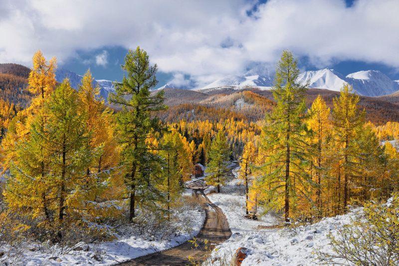 сибирь, алтай, горный алтай, осень, снег, горы Перевалкаphoto preview
