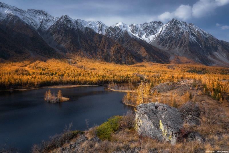 пейзаж, алтай, горы, озеро, скалы, лиственница, снежные вершины, желтый Осенний Алтайphoto preview