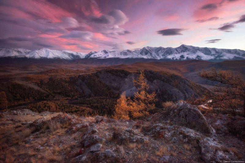 пейзаж, осень, горы, облака, закат, желтый, алтай Курайское сияниеphoto preview
