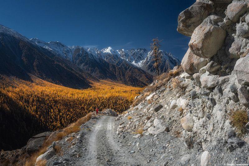 пейзаж, осень, скалы, свет, солнце, желтый, алтай, горы Шенелюphoto preview