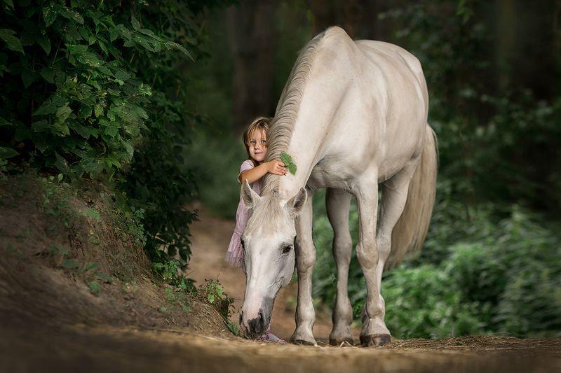 девочка, лошадь, лето, дети, животные, прогулка Моя лошадка.photo preview