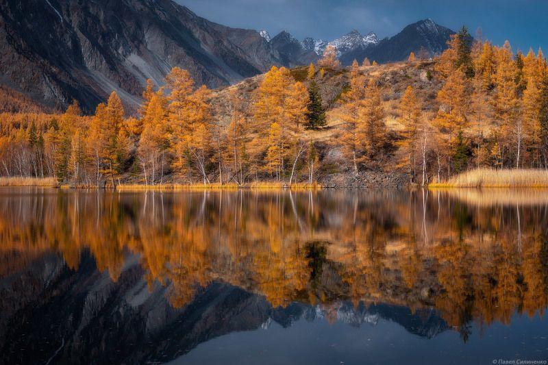 пейзаж, осень, алтай, озеро, отражение, горы, зеркало, желтый Киндыктыкульphoto preview
