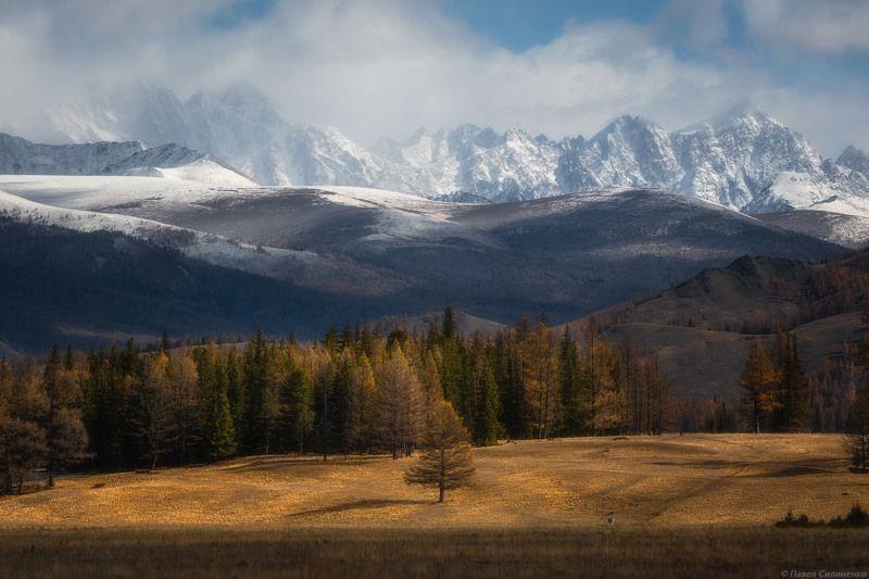 пейзаж, алтай, самаха, горы, степь, осень, вершины Самахаphoto preview