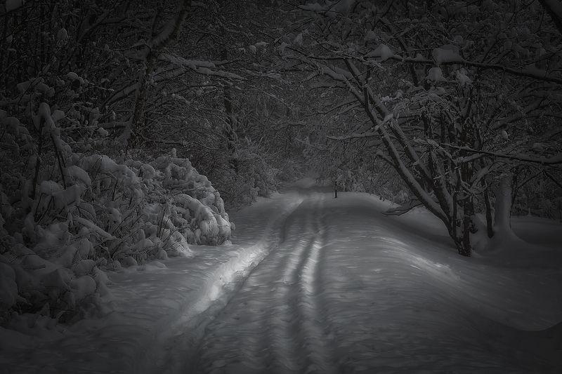 Зимним утром..photo preview