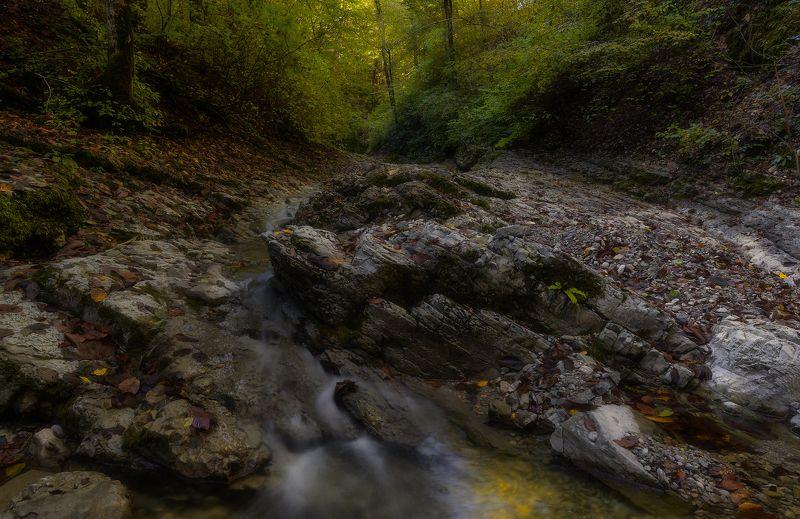 На горной речкеphoto preview