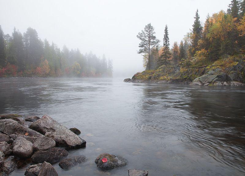 карелия, национальный паанаярви. Осени туманное течение.photo preview