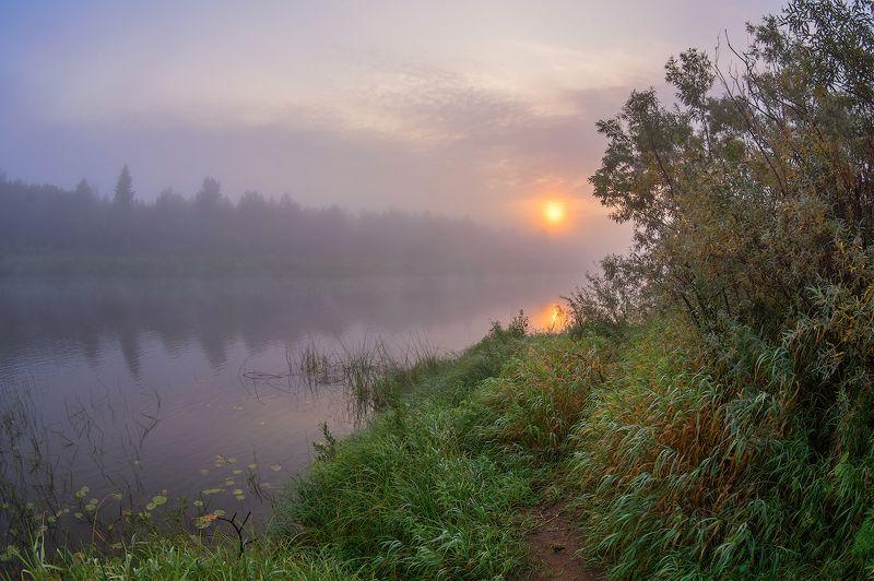 рассвет река туман  утро сентябрь молога встречая рассветы...photo preview