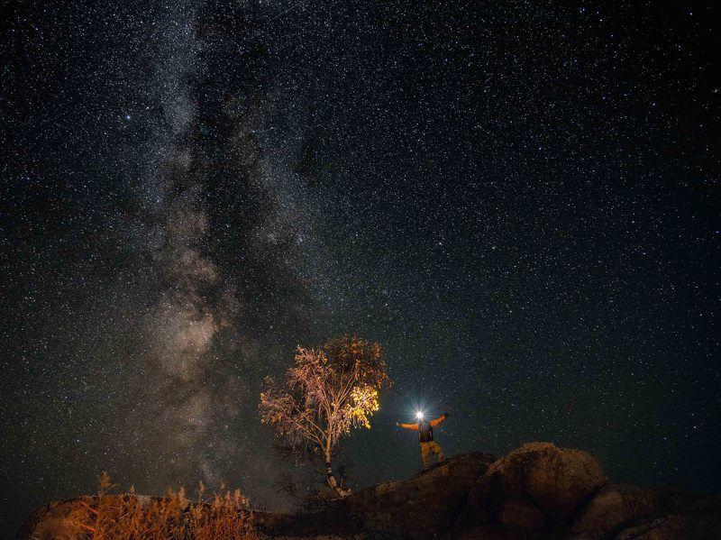 #landscape, #stars, #milkyway, #sky, #starlightnight, #starlight, #night, #man, #tree, #autumn, #russia, #altaikrai, #altai, #пейзаж, #звёзды, #млечныйпуть, #небо, #звёздныйсвет, #звёздноенебо, #ночь, #человек, #дерево, #осень, #россия, #алтайскийкрай, #а Искрыphoto preview