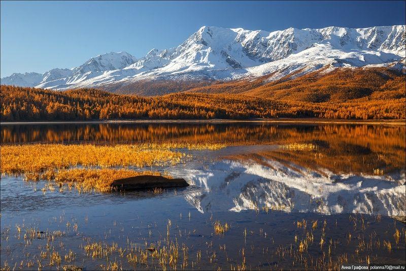 алтай  горы, горный алтай, северо-чуйский хребет, озеро,  #красиваяосень2018 Утренняя гармония)photo preview