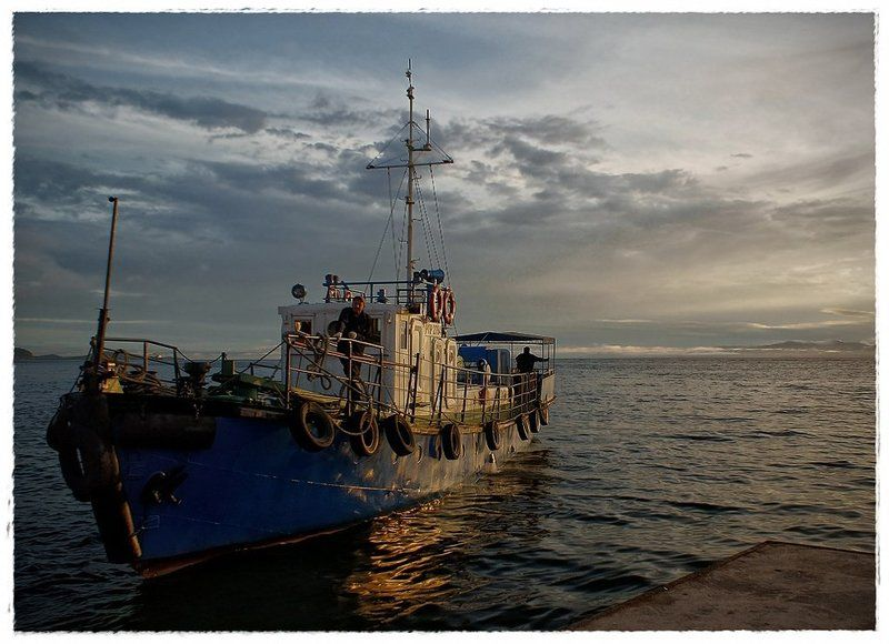 морской волкphoto preview