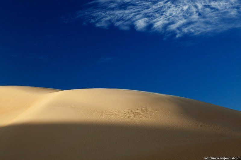 сахара, sahara, desert sandy minimalismphoto preview