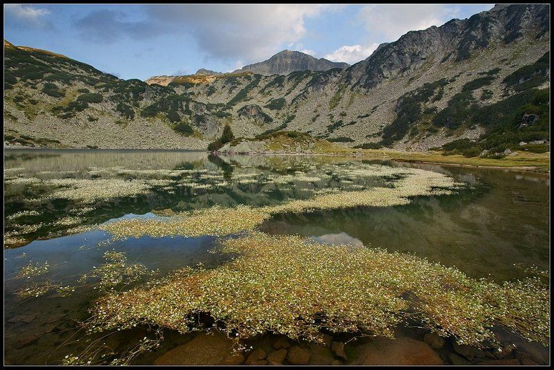 bulgaria , pirin The fish lakephoto preview