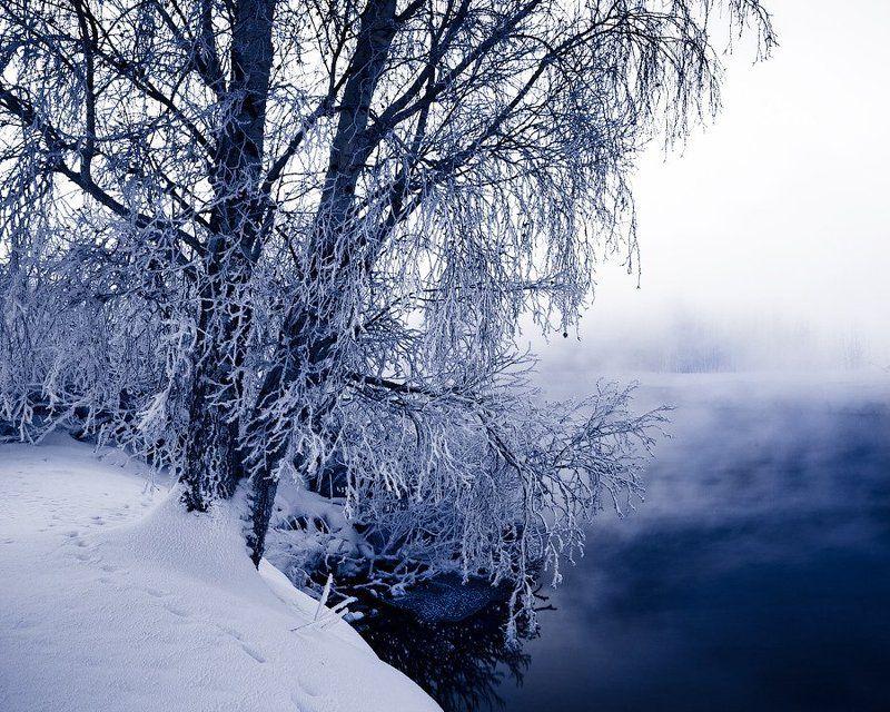 Winter slumberphoto preview