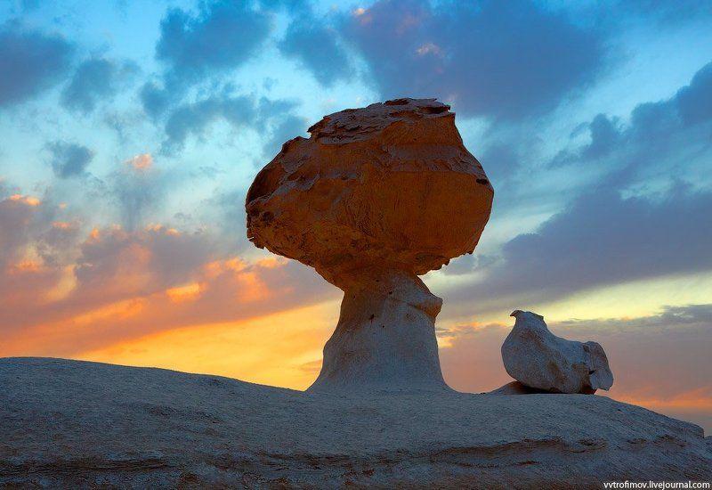sahara, white desert, egypt, сахара, белая пустыня, египет Chicken & Mushroomphoto preview