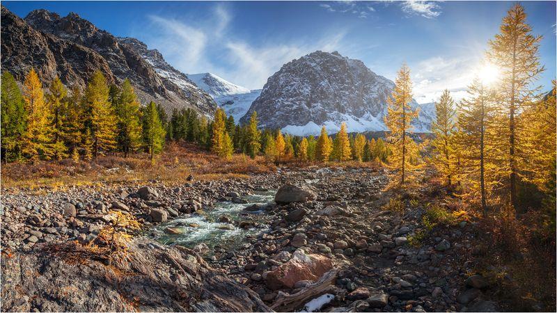 золотая осень.алтай.актру,горы, Золотая осень.Алтай.Актру.photo preview