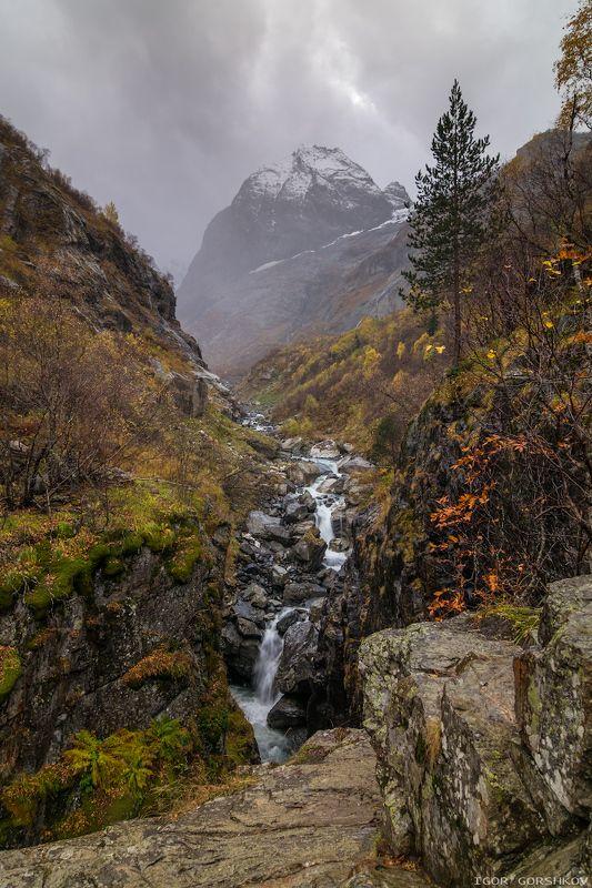 кавказ,домбай,горы,осень,лес,облака,туман,дождь,пейзаж,природа,камни,водопад,ущелье,аманауз,софруджу,скалы,снег,снегопад Снегопад в горахphoto preview