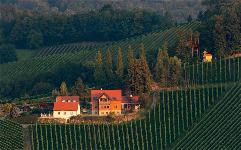 лето,свет,часовня,штирия,гамлитц,австрия,gamlitz- sernau,landscape,панорама. Летний этюдphoto preview