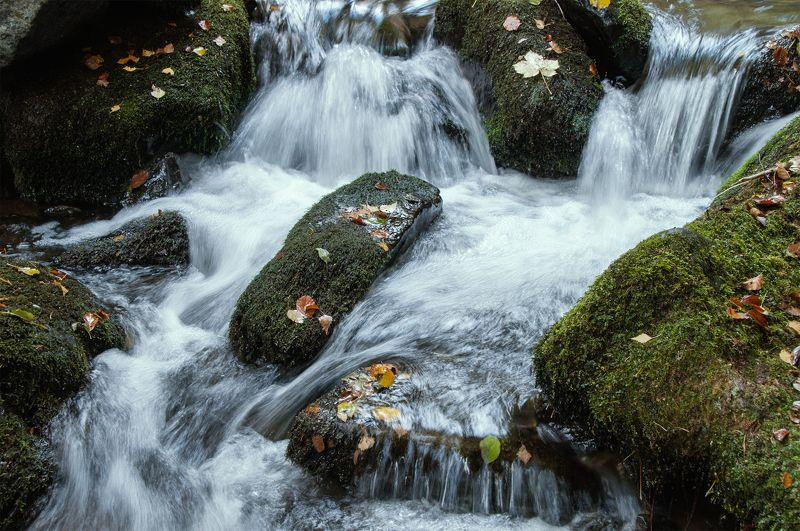 Eсенни мотиви в рекатаphoto preview