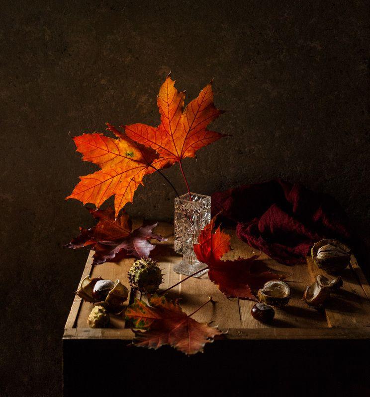 осень, кленовый, лист, красный, натюрморт, осенний, каштан Два листаphoto preview